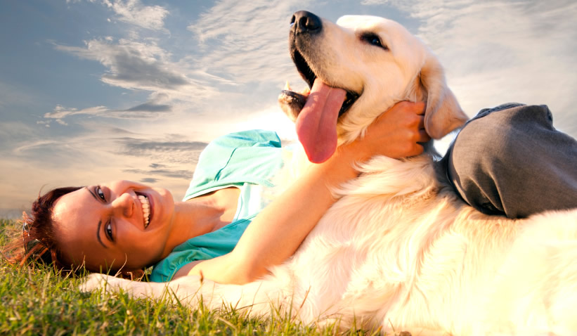 What Importance Do Pets Hold In Human Life